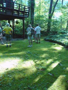 2008 Virginia_moss lawn display