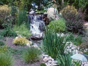2008 Virginia_waterfall