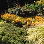 Givernay Gardens France