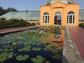 HOF Rich Sacher American Water Garden