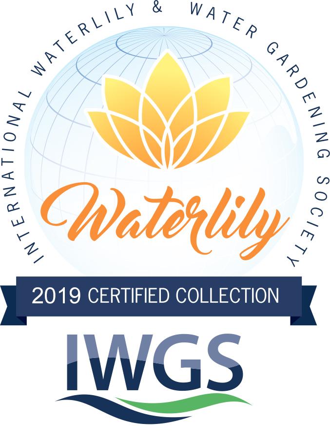 IWGS_LotusWaterlily___Waterlilly