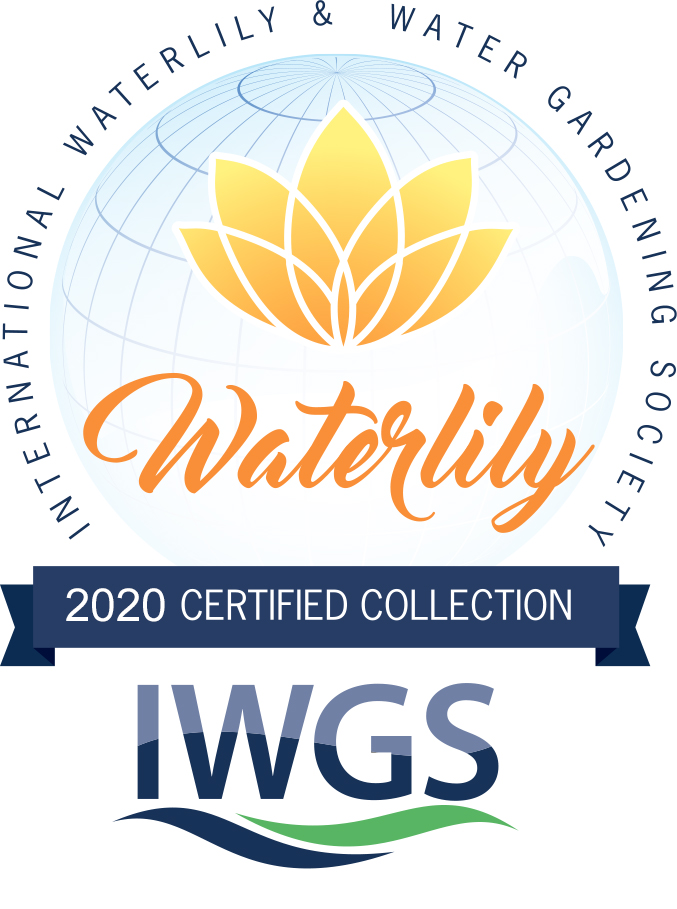 Certified Collection Logo 2020